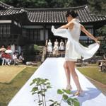 韓山モシ文化祭