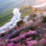 荒嶺山展望台